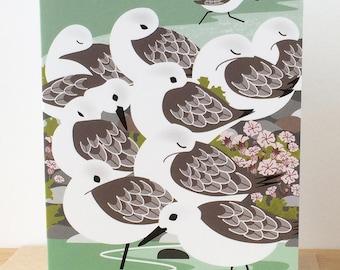 Sanderlings and Sea Campion Greetings Card
