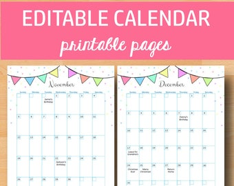 printable calendar 2018 calendar printable calendars 2018 birthday planner pages editable monthly planner letter size instant download