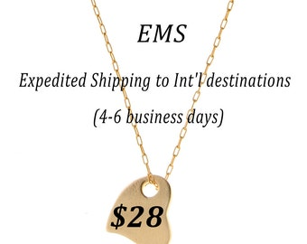 Expedited Shipping to International Destinations