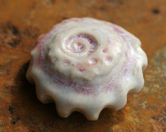 Handmade Seashell Shank Button