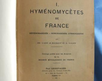 Hyménomycètes de France.  Hetérobasidés -- Homobasidiés Gymnocarpes. 1928.