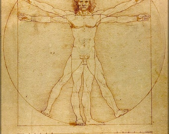 Poster, Many Sizes Available; Vitruvian Man (C. 1485) Accademia, Venice Leonardo Da Vinci