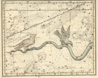 Constellation art, Constellation, Constellation print, Constellation of Hydra, 37