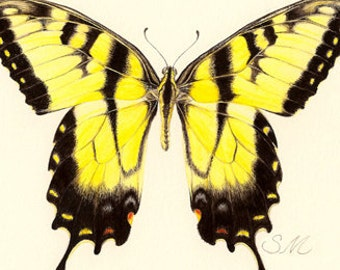 Tiger Swallowtail Butterfly print-from gouache painting