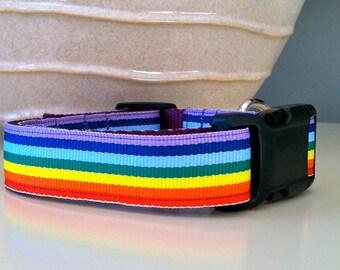 Dog Collar- Rainbow