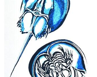 Horseshoe Crab Watercolor Art Print 8x10