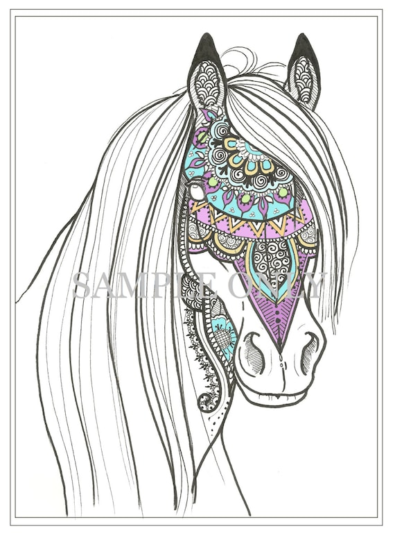 paarden kleurplaten boek