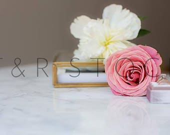 Styled Stock Photography, Stock Photography for Bloggers, Wedding Website Stock Photos, Stock Pictures, Stock Photo Rose, Rose Stock Images