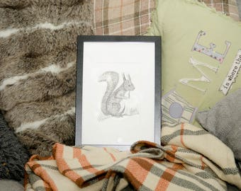 Red Squirrel doodle black and white wildlife art print