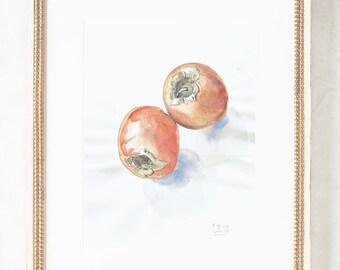 Kakis watercolour drawing  - ORIGINAL watercolor and pencil drawing after kaki fruits, persimmon still life by Catalina