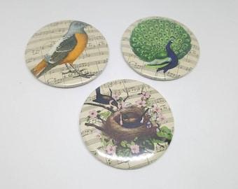 Set of 3 magnets 56mm bird