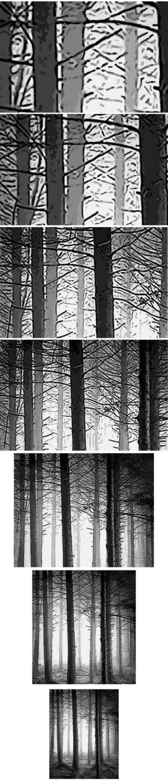 Fifty Shades Of Gray Woodland Forest Trees Shower Curtain Fabric Extra Long Window Panel Kids Bathroom Decor Custom Valance Bathmat Towel