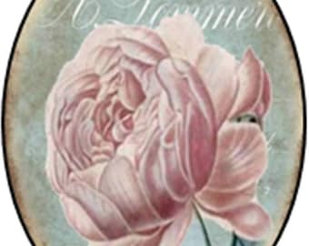 1 cabochon clear 10 x 14 mm theme vintage pink