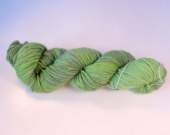 Lizard on Octosport  SW Merino Hand dyed Sport weight  yarn