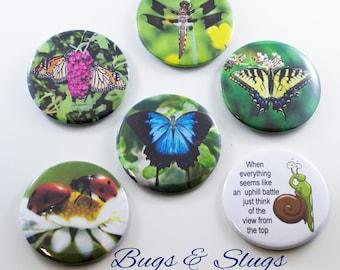 Bugs & Slugs Collection