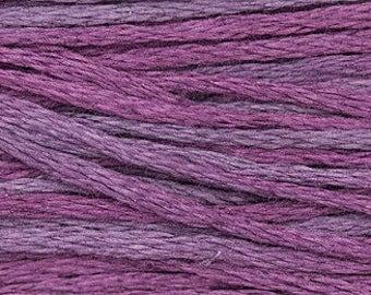1318 Concord - Weeks Dye Works 6 Strand Floss