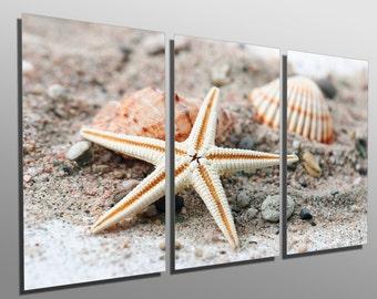 Metal Prints - Starfish and Seashell -3 Panel split, Triptych- Multi Panel Metal wall art HD aluminum panels for wall decor, interior design