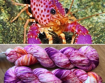 Violet Spotted Reef Lobster, merino nylon sock yarn