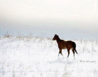 Horse Photography - dreamy, surreal horse photograph - 8x10 wild horse running photo, snow winter landscape, ethereal sky
