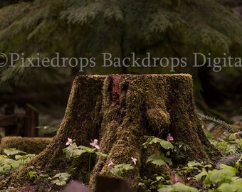 Digital backdrop/prop (Moss Covered Stump in Old World Forest)