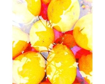 Garden Print IV ~ Floral ~ Vintage ~ Photo Print ~ Holga ~ Flowers ~ Double Exposure ~ Art Print ~ Photo Prints ~ Home Decor ~ Flower Garden