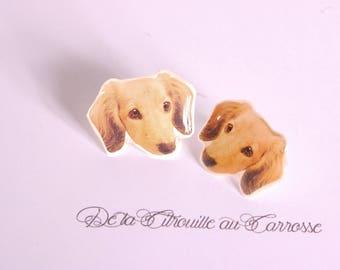 Brown dog ear studs