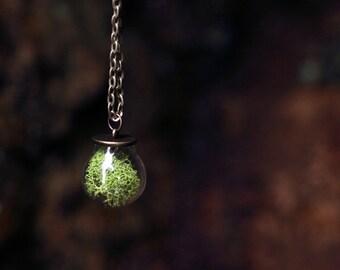 Forest Moss Glass Dome Terrarium Necklace