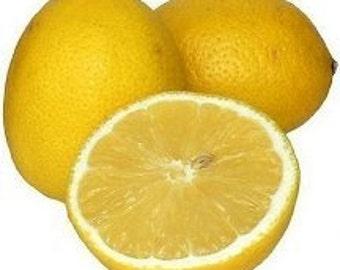 NEW Vegan Lip Lover - Gluten Free Organic, Healing Lip Butter Balm scented w/ Lemon EO Organic Coconut Oil -Natural SPF - Lemon Drop