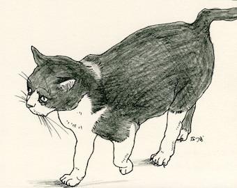Cat original drawing - P015November2015