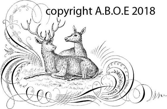 deer calligraphy monogram clipart download digital image graphics printable typography artwork