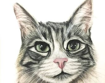 cat drawing pet portrait custom cat portrait custom drawing from photo personalized gift idea cat memorial pet gift for animal lovers