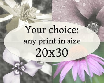 20x30-inch Fine Art Photograph of your choice