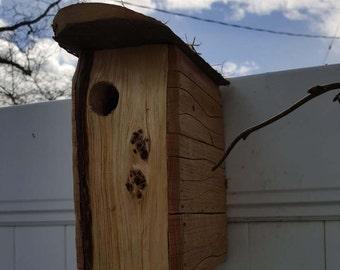 Pine face birdhouse 4x9x7.5