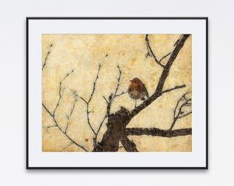 American robin bird print bird on a tree branch robin wall art bird watching art little bird art songbird robin poster large bird wall art