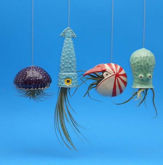 Jellyfish Air Plant Holders 4 Pack: 4 Large Air Planters Octopus Garden Collection Jellyfish