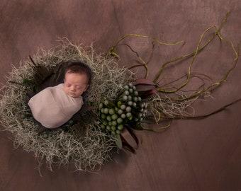Newborn Natural Template Composit background
