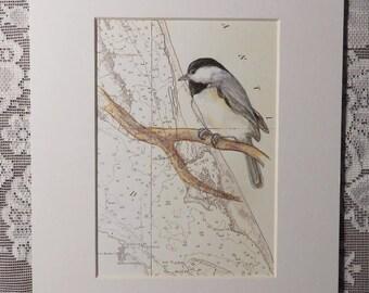 Chickadee drawing Etsy