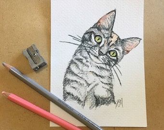 Custom Colored Pencil Portrait Drawing: Dog, Cat, Animal Lover Gift