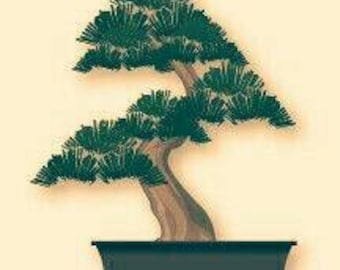 Personalized Bonsai Tree (small)