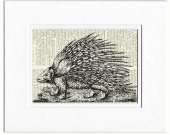 porcupine print no. 3