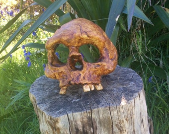 Neanderthal Skull Sculpture, Partial Skull Replica Art