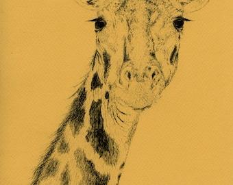 Curious | A5 Giclée Print on Archival Matte Paper