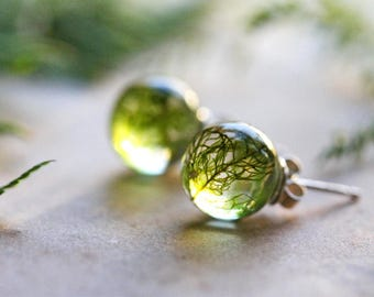 Forest moss earrings, real plant jewellery, green moss, gift for her, sterling silver stud earrings, resin jewellery, made in Ireland
