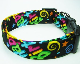 Birthday Celebration Dog Collar