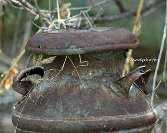 Set of 3 Rustic Old milk can photos, home decor, wall art, vintage
