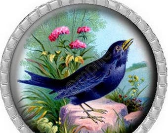 Cabochon pendant - Has feathers (446)