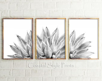 Black And White Wall Decor, Agave Prints Wall Art,Botanical Print Set,Cactus