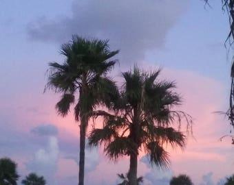 Island Sunset wth Palm Trees