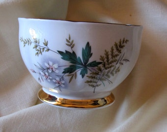 Queen Anne Open Sugar Bowl Bone China  Louise Pattern  Floral and Green Leaf /England