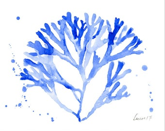 BLUE seaweed coral 8x10 inches instant digital download